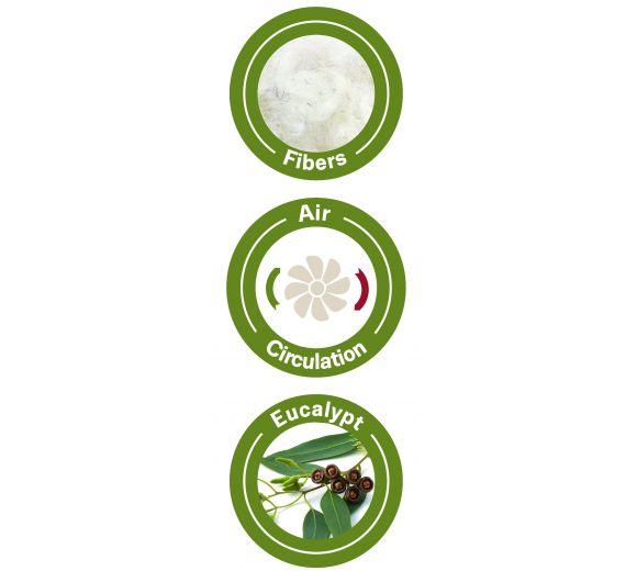 завивка Eucalyptus Sumer /евкалипт сенс/ 150/200 - 3